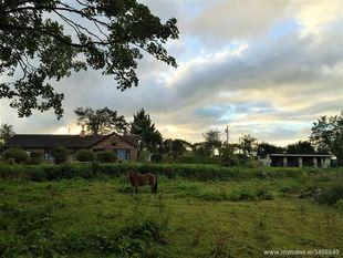 Killeenagh South - Knockanore